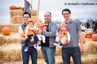 2015_Pumpkin_patch-1014