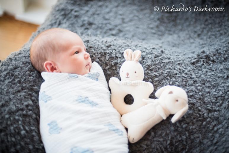 Kellan_newborn_photos-6141